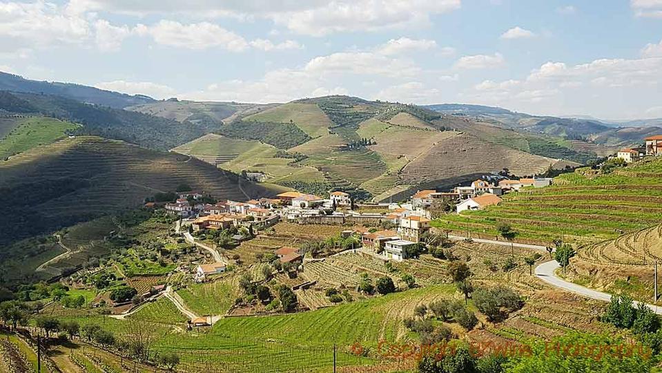 Vale de Mendiz, where you find Wine & Soul in the Douro Valley
