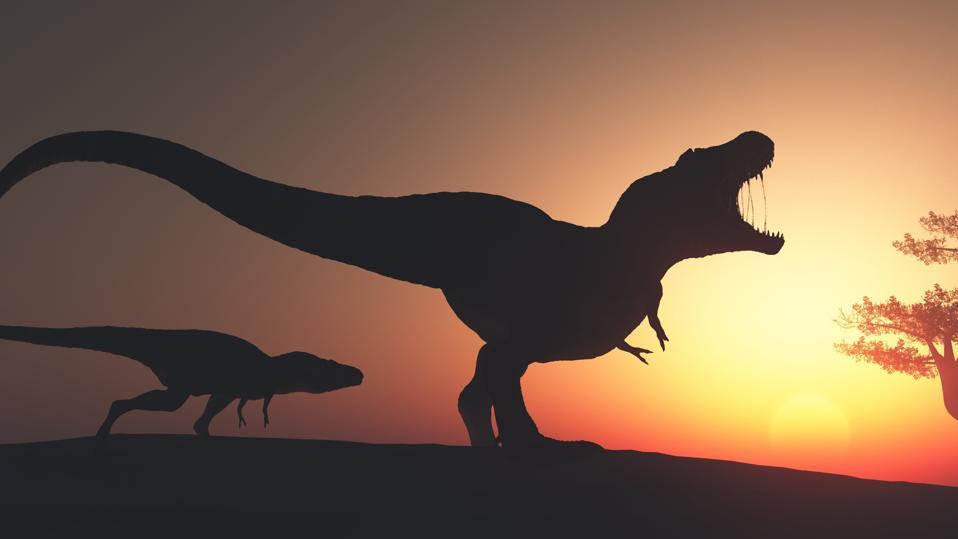 Tyrannosaurus Rex in the jungle.