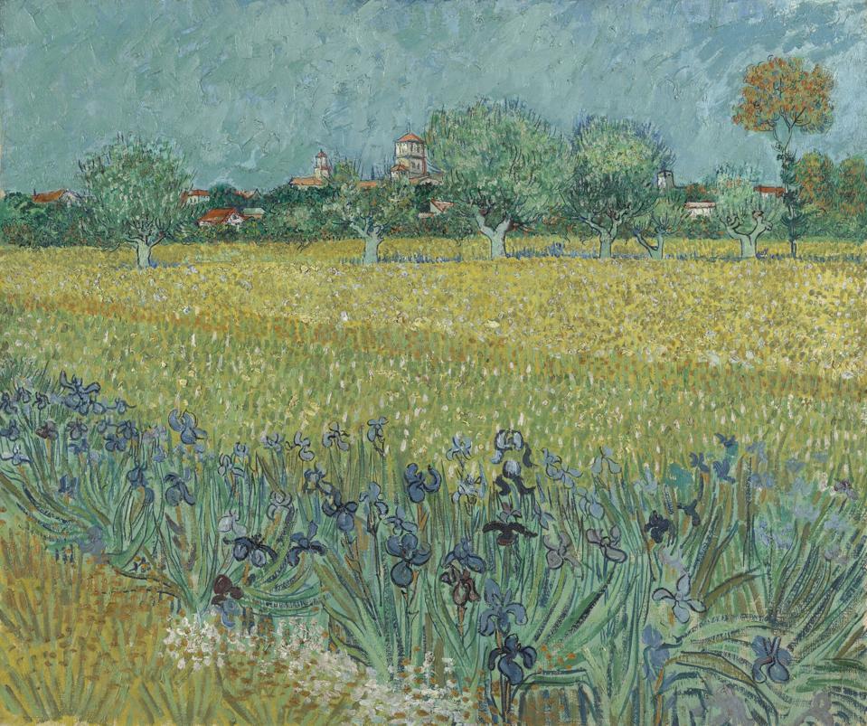 Vincent van Gogh, Field with Irises near Arles.