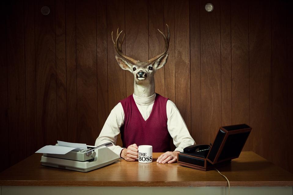 Deer CEO at His Desk