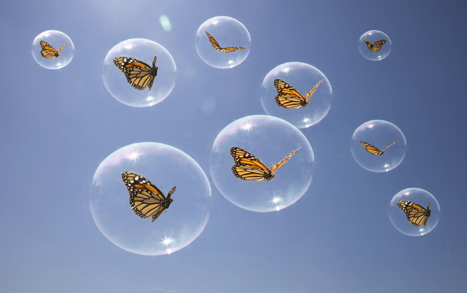 Butterflies in there own bubbles