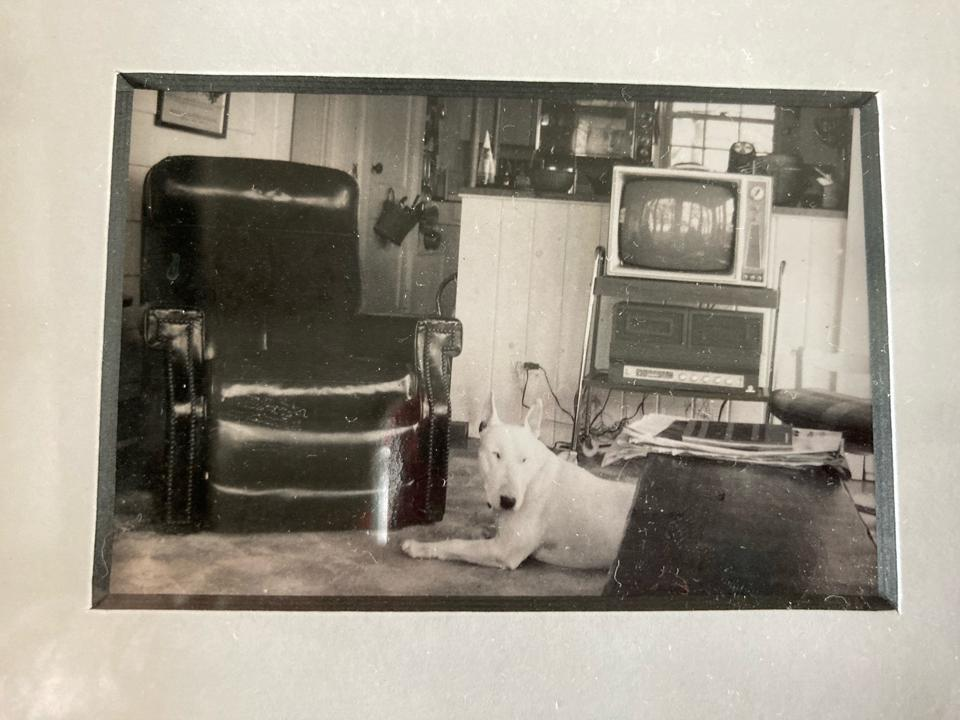 Steinbeck's reading chair on the dog he had before the famous Charley, according to the listing agent.