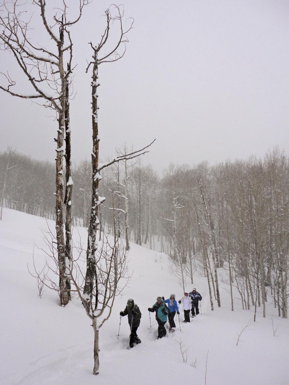 Trekking through snow-covered hills and trails in Aspen provides plenty of calming and scenic views.