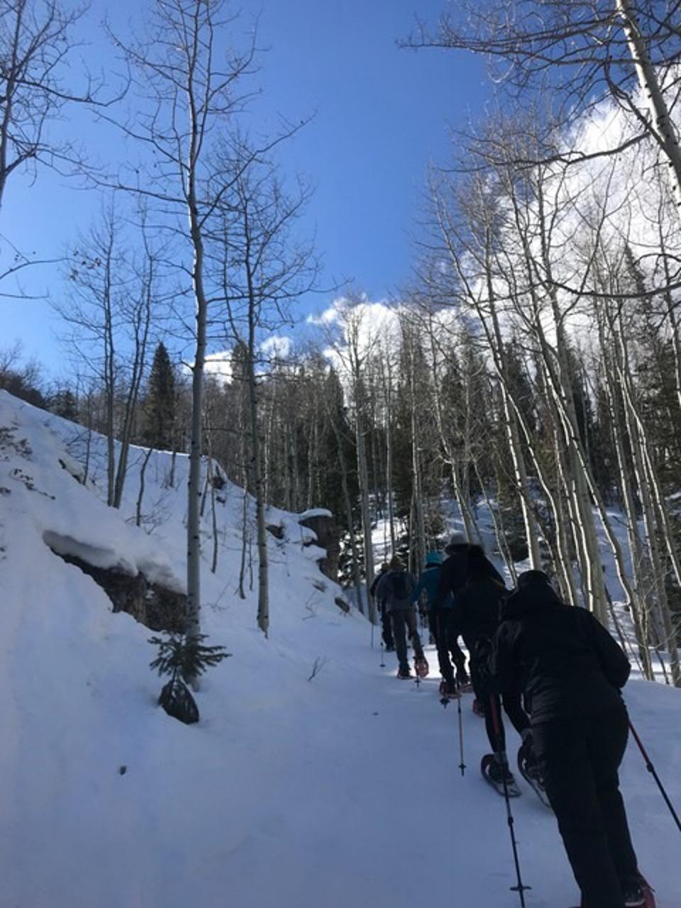 Snowshoeing in conditions like this make for a great cardio day.