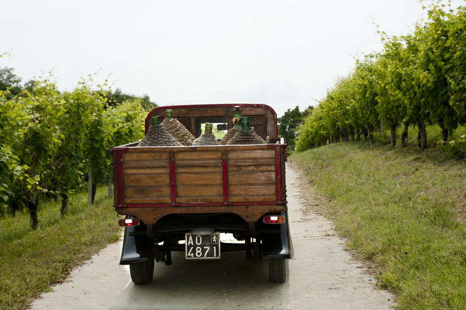 Image of an old truck in vineyard in Roero, Piedmont, Italy