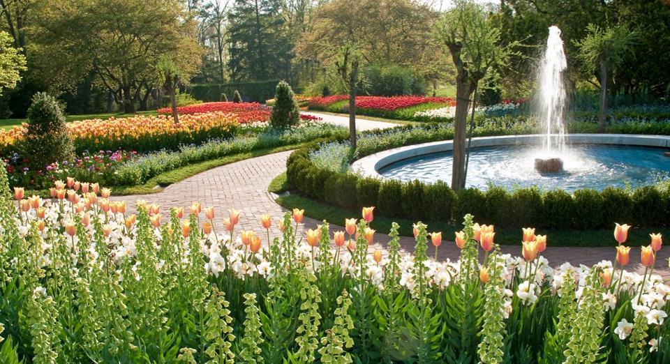 Longwood Gardens spring flowers, tulips, daffodils