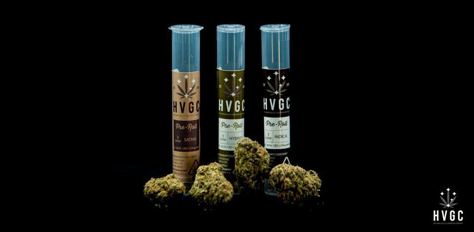 cannabis marijuana ptsd veterans