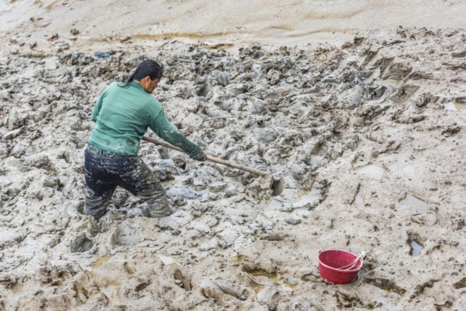 Oyster Farm In Quanzhou