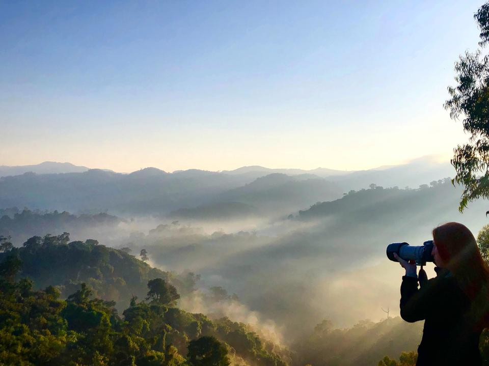 Traveler photographing Gishwati-Mukura National Park