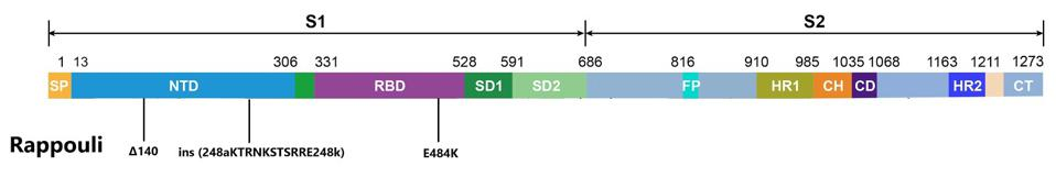 Mutations to the spike protein