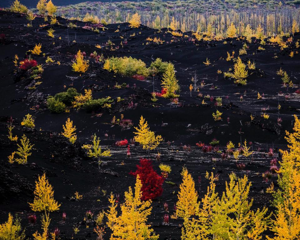 Sony World Photography Awards: volcanoes of Kamchatka in eastern Russia.