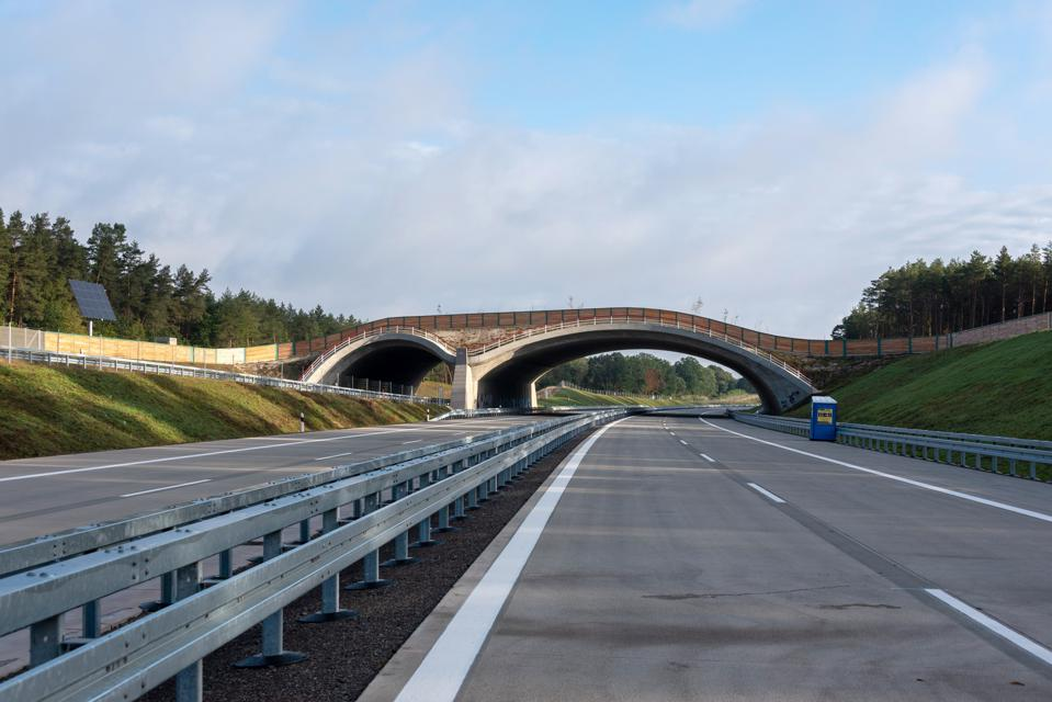 A newly built wildlife bridge on the course of the northern extension of the Autobahn 14