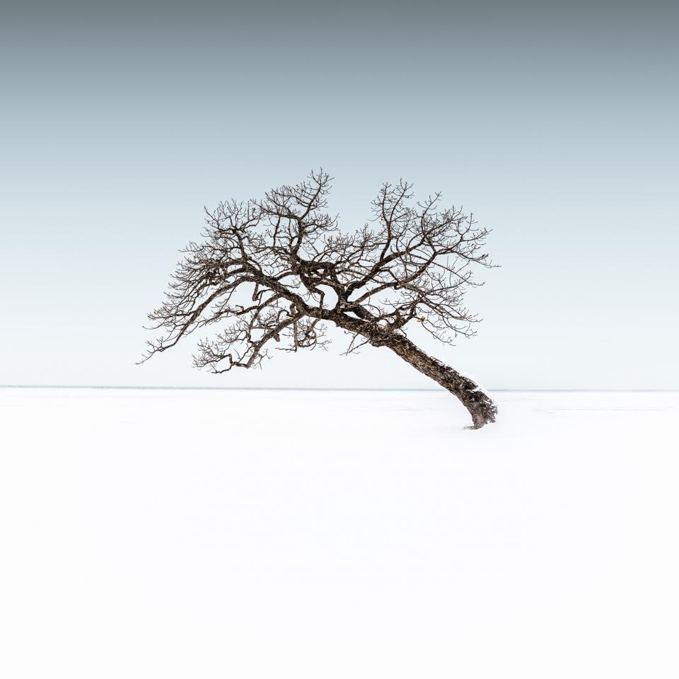 Sony World Photography Awards: Hokkaido, Japan, a land of ice and snow.