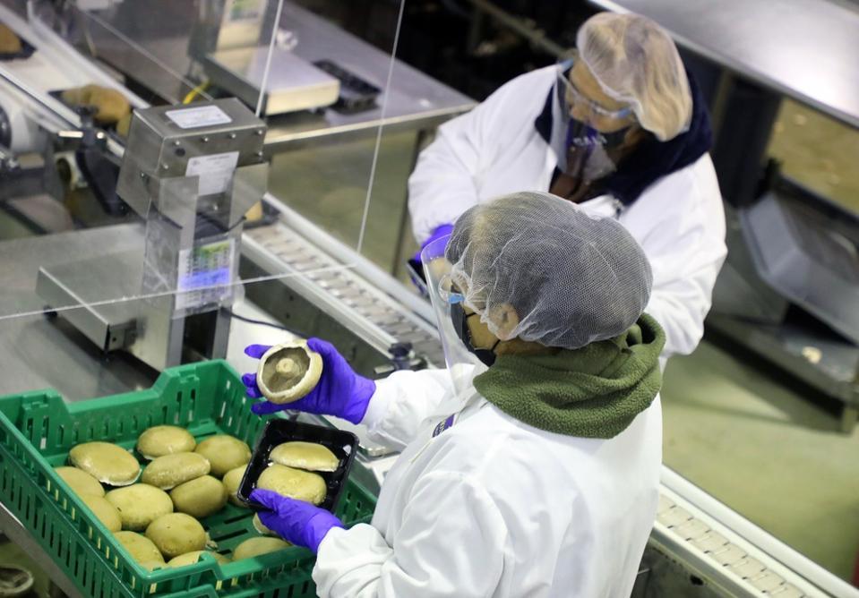 Monterey Mushrooms California Farm workers COVID-19 vaccine