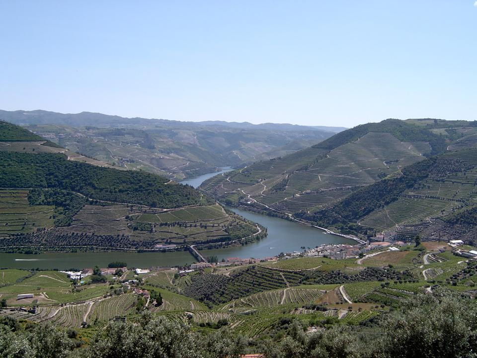 The vineyards of the Douro Valley rise up from the river in northern Portugal