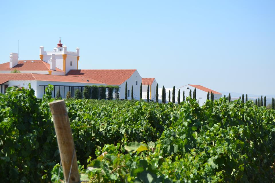 Torre de Palma hotel in the Alentejo, Portugal, is surrounded by vineyards