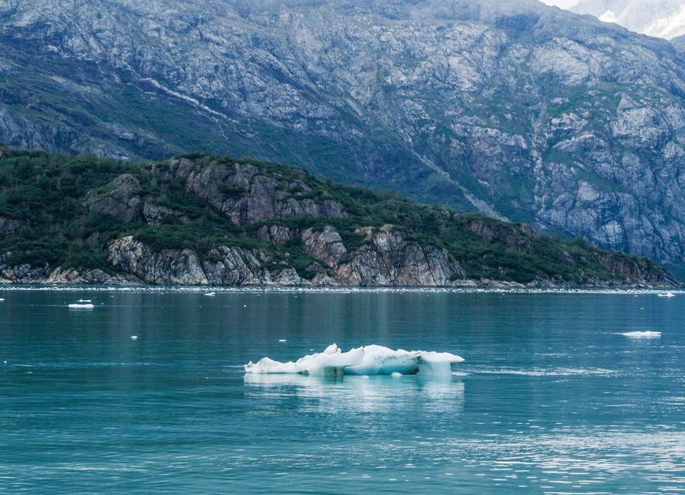 Glacier Bay  with a huge glacier in the background