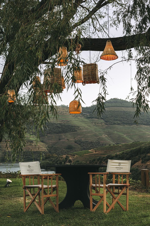 Chairs below a tree near mountain vineyards