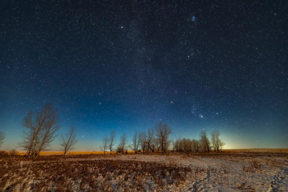 Orion and the winter stars and constellations rising in the light of a first quarter Moon on December 2, 2019. This was from home in Alberta. Orion is above the trees with Aldebaran in Taurus and the Pleiades above him. At top left is the star Capella and