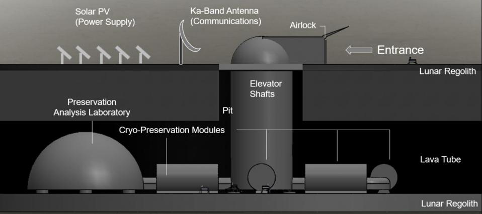Side view of the proposed ark design.