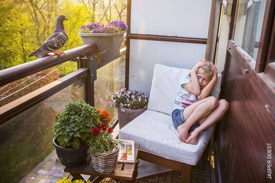 A pair of feral pigeons befriends a family isolated in their apartment in the Netherlands.
