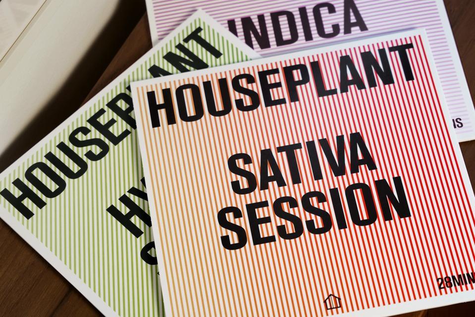 houseplant seth rogen vinyl housegoods cannabis marijuana brand