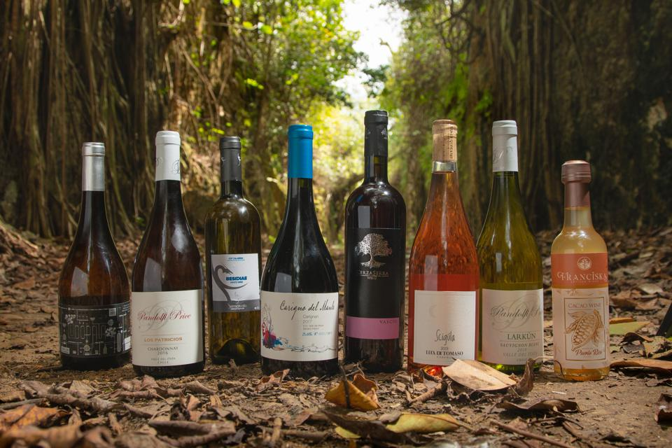 Some of the wines available to club members of Vegan Wines.