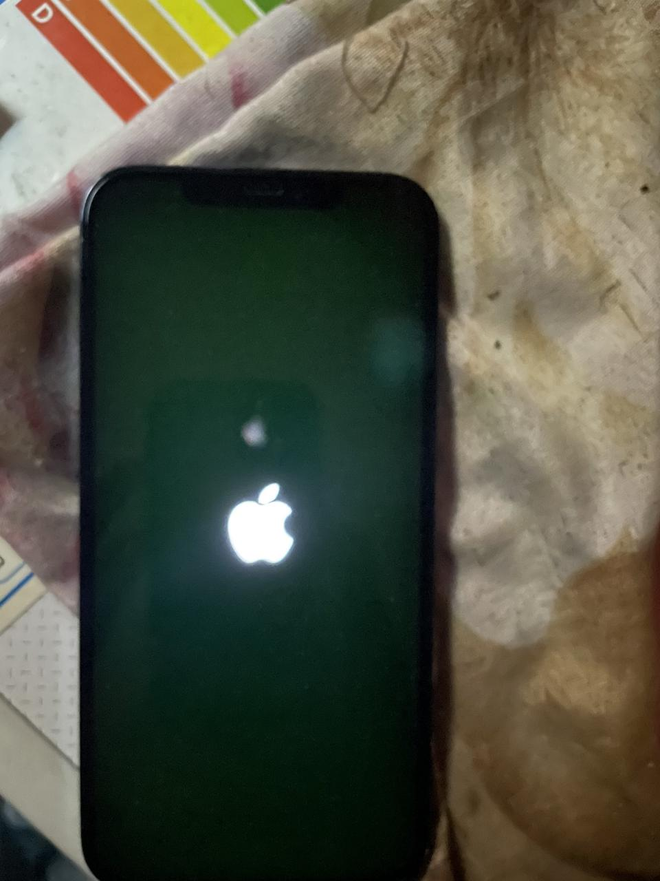 The iPhone 12's green tint issue.