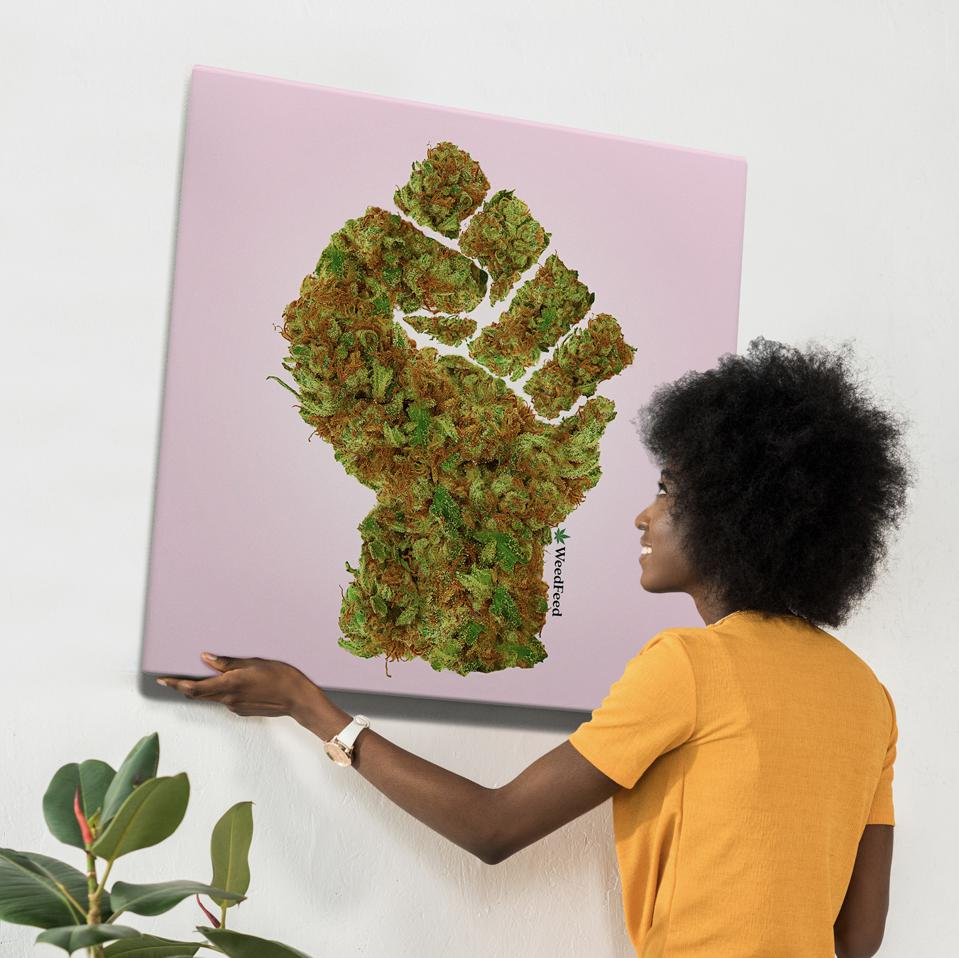 WeedFeed
