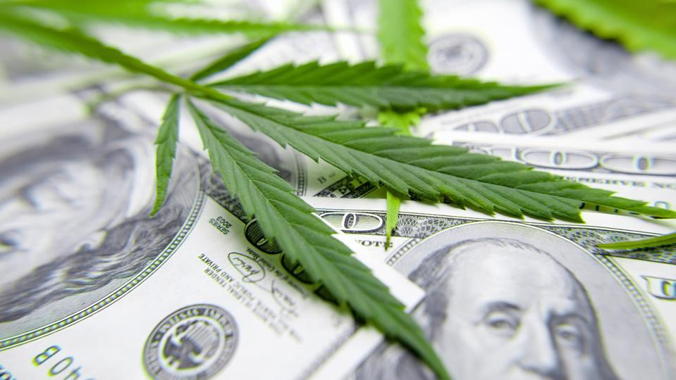 Cannabis leaf on Dollar bill, green leaf of marijuana. Money and hemp. The concept of legalization of the drug business, CBD oil