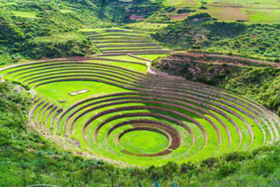 Concentric circles of green, the insider circles at lower elevation than the outer rings.