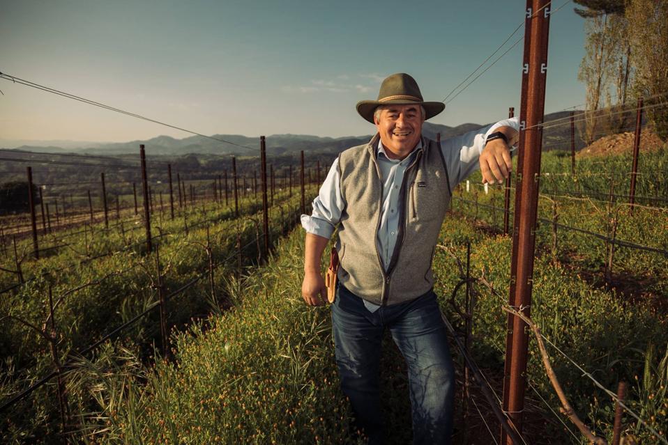 Rolando Herrera in the Vineyards