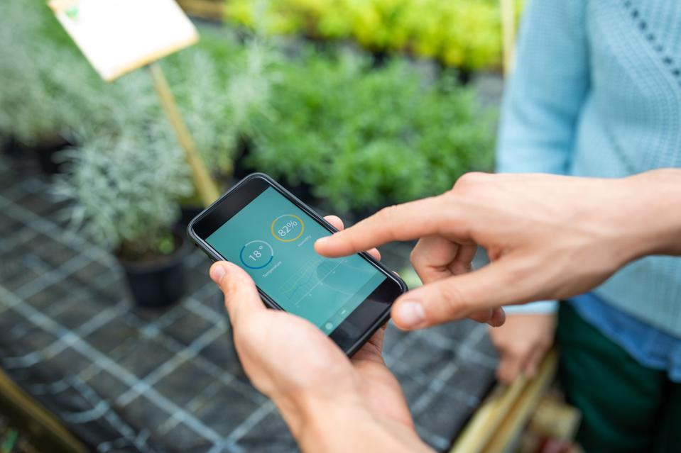 keeping a check on plants using a mobile app