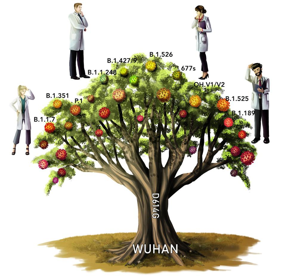 """An illustration of a """"variant tree."""""""