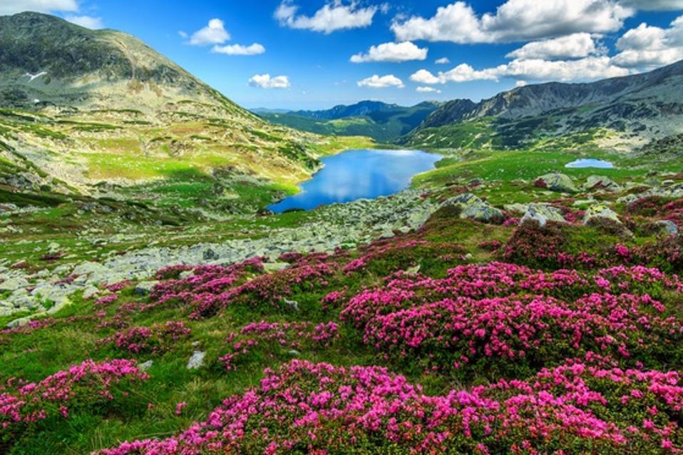 Retezat National Park in the Carpathian mountains, Romania