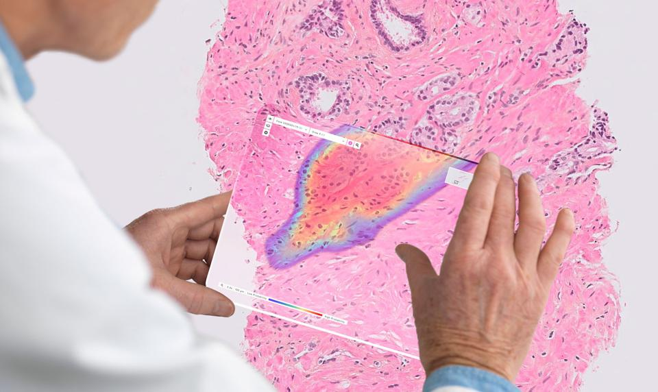 Ibex's platform is used by pathologists who typically work in pathology laboratories found in large medical centers, community hospitals, and the private sector.