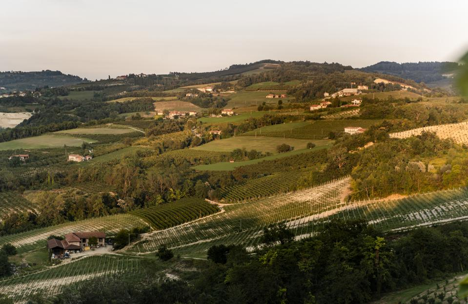 Alba is famous for its earthy gastronomy, including white truffles and red wines made from Nebbiolo.
