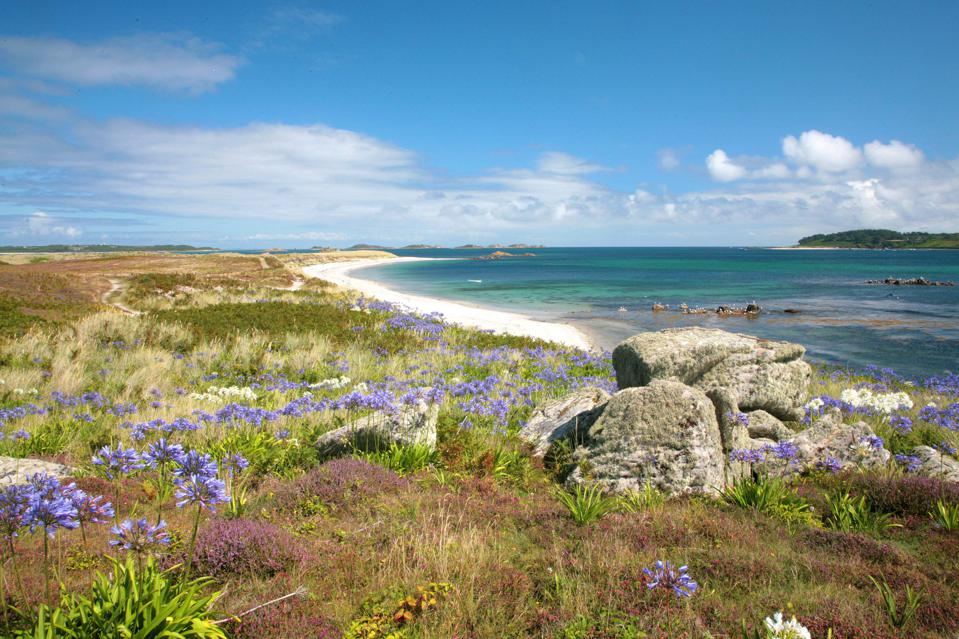 Tresco in the Scilly Isles