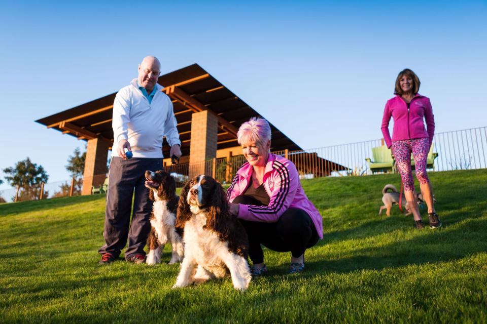 Dog park for 55-plus new home community in Arizona.