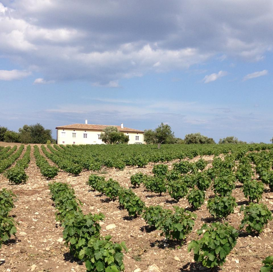 The estate in Sicily.