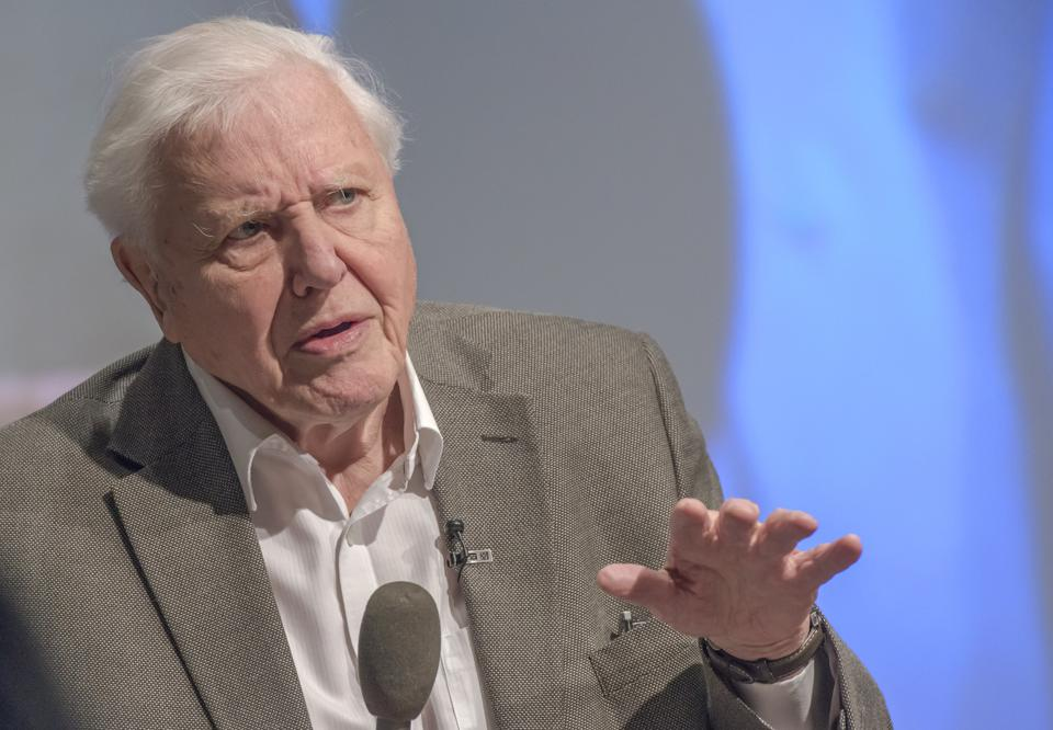 Sir David Attenborough addresses the U.K. Climate Assembly in 2020.