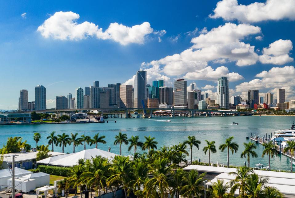 Miami Downtown Skyline With Palm Trees, Elevated View