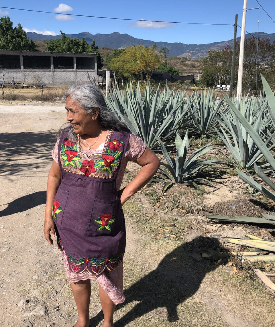 Berta Vazquez, mezcal producer from the Cuishe Cooperative. Her mezcal is described by Cuishe member Adriana Correa Casas as, ″very special...her production is unique because of her Zapotec roots.″