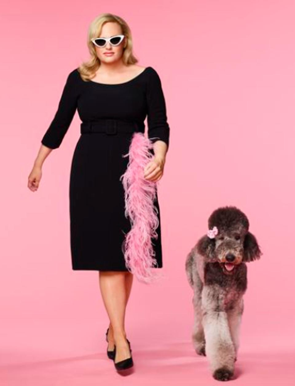 Rebel Wilson stars in ABC's ″Pooch Perfect.″