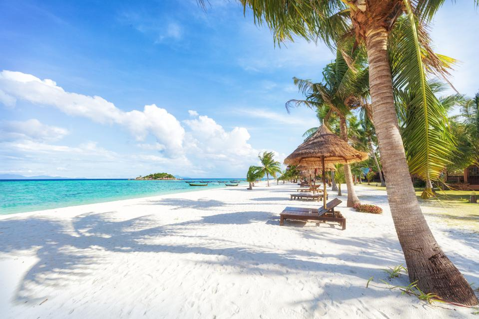 A white sand beach with palm trees and beach beds with umbrellas, next to an aqua sea