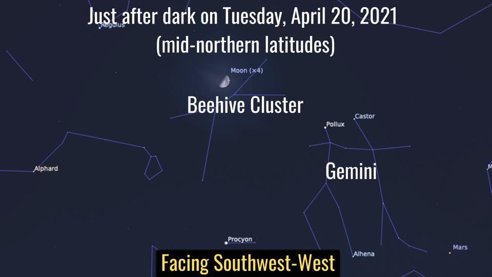 Martes 20 de abril de 2021: La luna visita la colmena.