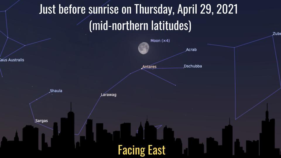Giovedì 29 aprile 2021: La luna vicino ad Antares