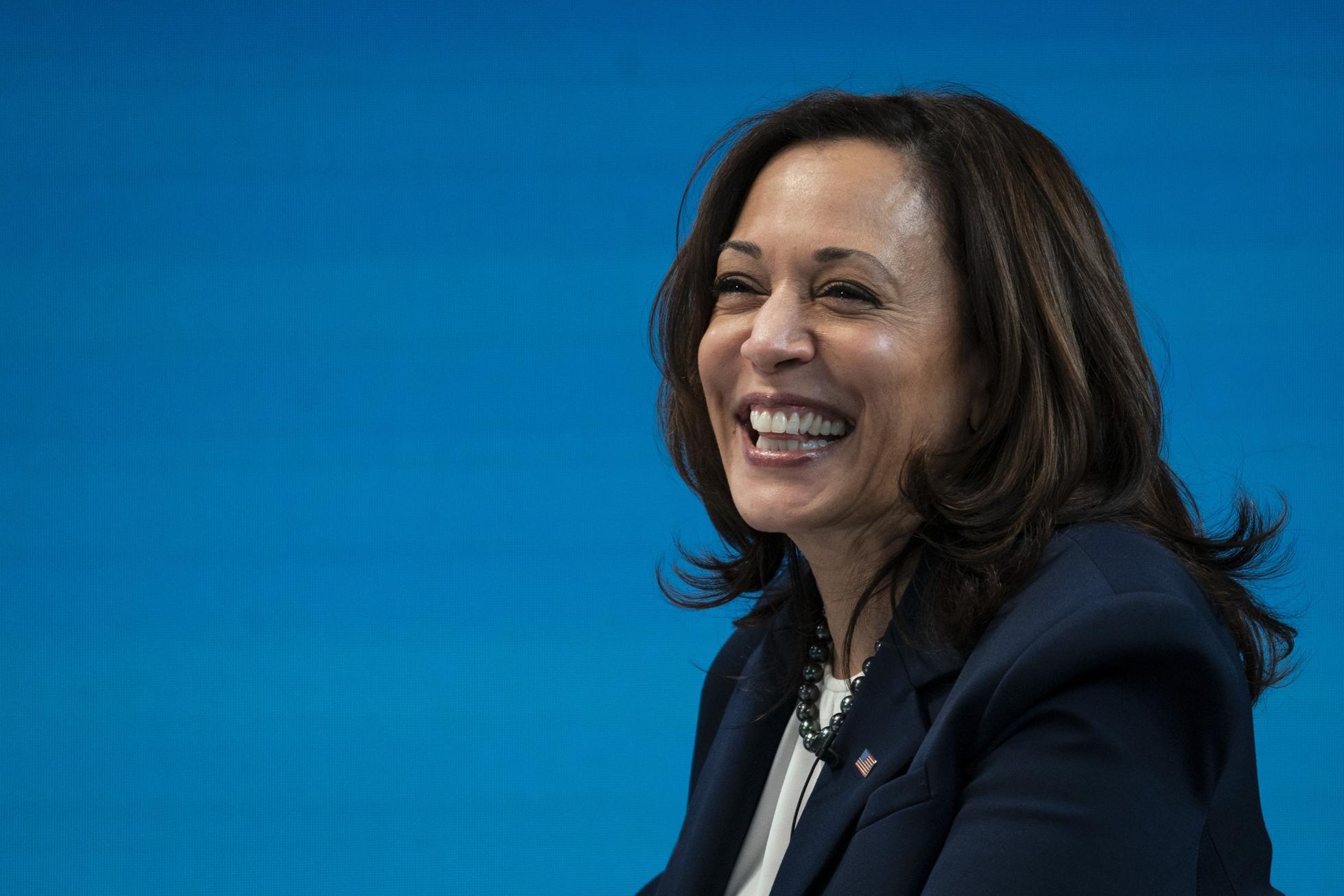 Vice President Kamala Harris And Treasury Secretary Janet Yellen Hosts Virtual Roundtable With Local Black Chambers of Commerce