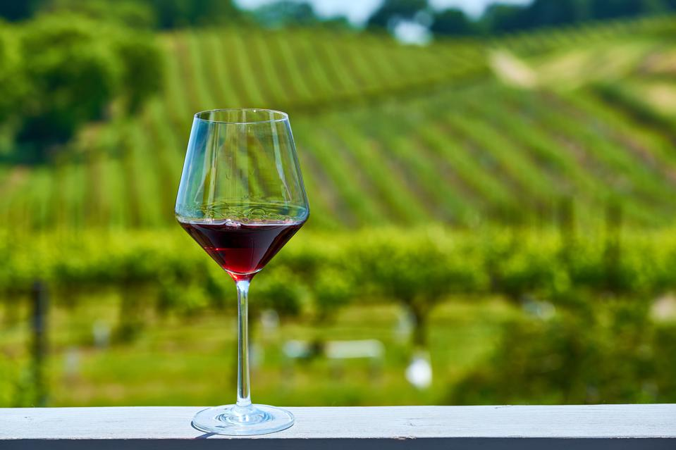 virtual tour wine tasting