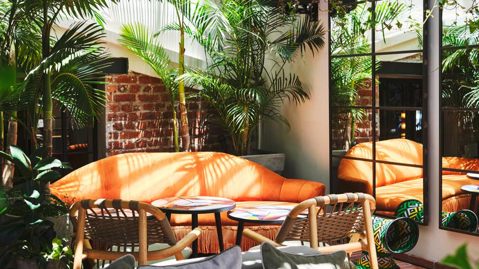 Three chairs and a table surrounded by tall plants
